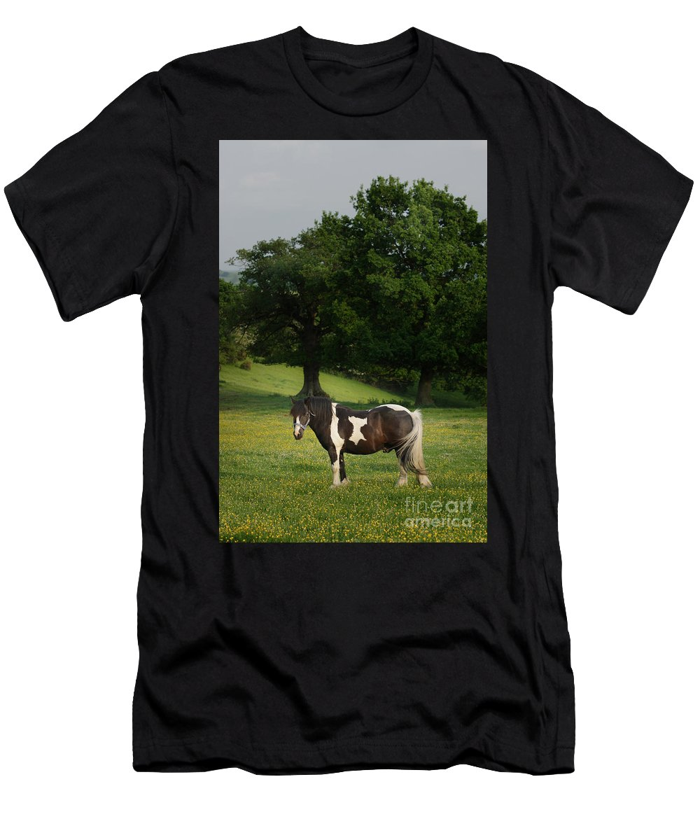 Horse Men's T-Shirt (Athletic Fit) featuring the photograph The Sunny Meadow by Angel Ciesniarska