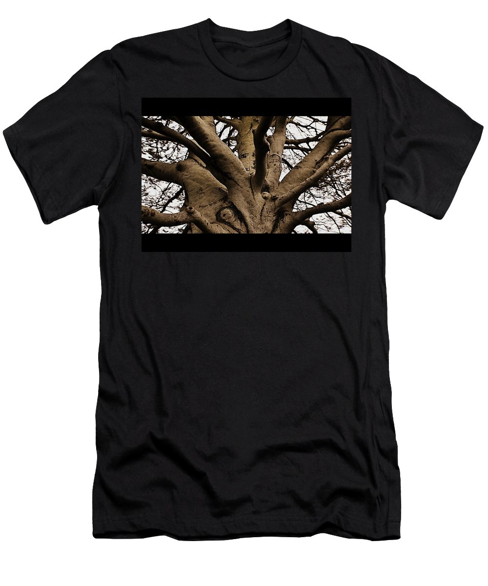 Tree Men's T-Shirt (Athletic Fit) featuring the photograph The Tree by Marysue Ryan