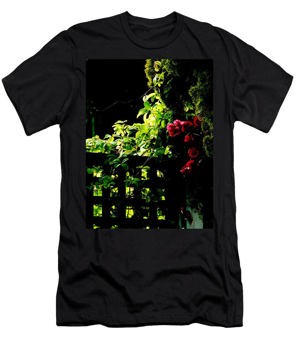 Backlit Men's T-Shirt (Athletic Fit) featuring the photograph The Trellis by Steve Taylor