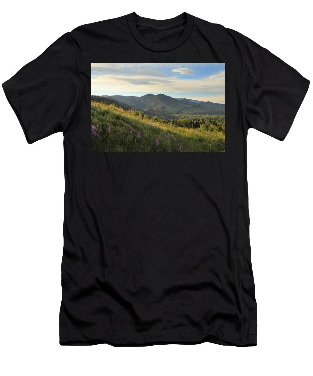 Chautauqua Men's T-Shirt (Athletic Fit) featuring the photograph The View From Chautauqua by Scott Rackers