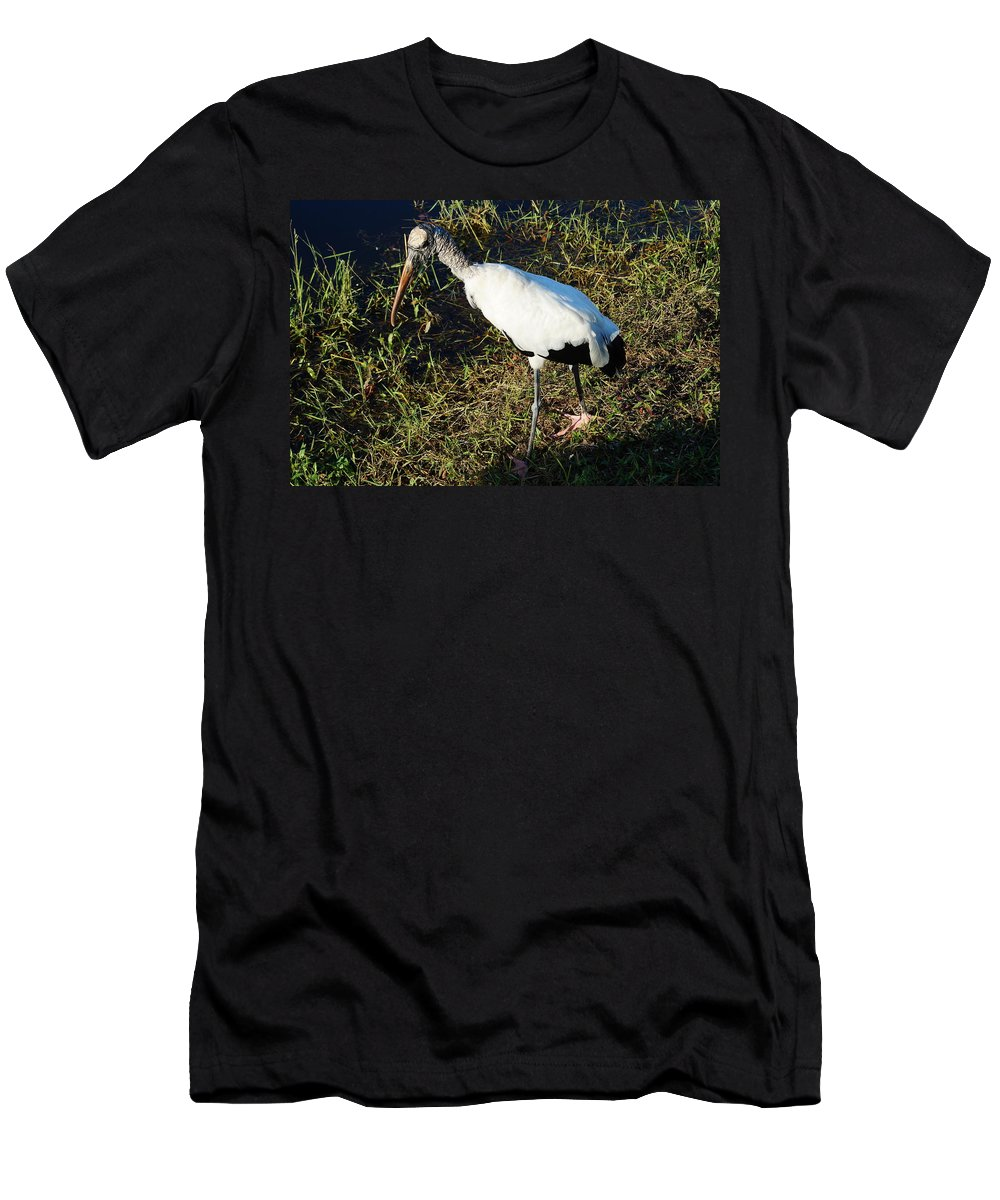 Everglades Men's T-Shirt (Athletic Fit) featuring the photograph The Woodstork by John Wall