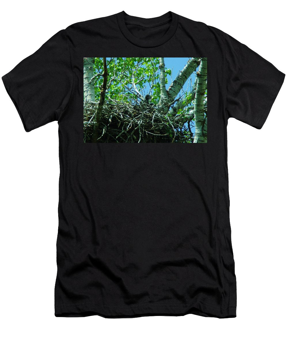 Eagles Men's T-Shirt (Athletic Fit) featuring the photograph The Young Eaglet Peaks Out by Jeff Swan