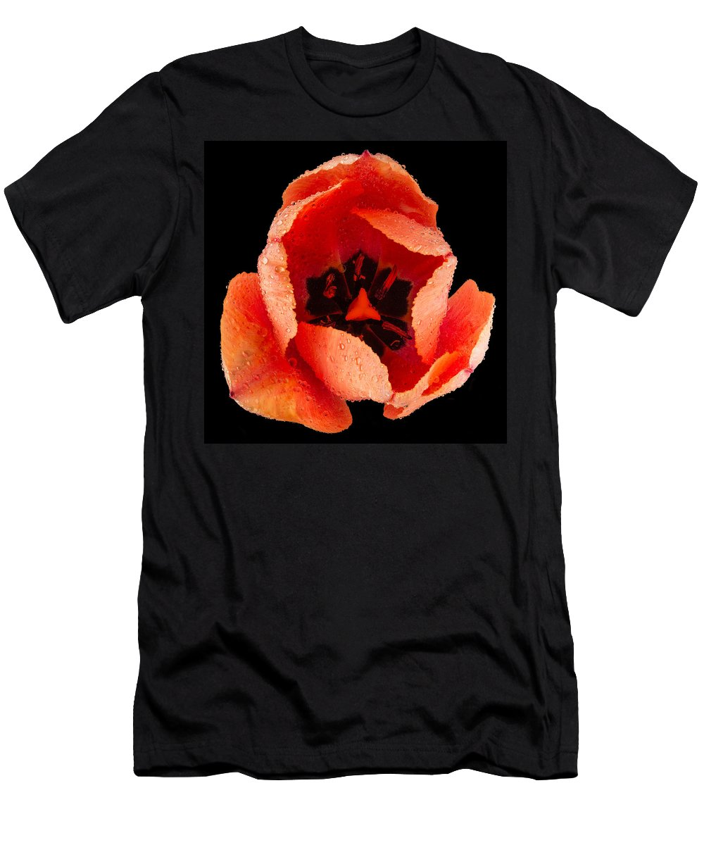 Red Men's T-Shirt (Athletic Fit) featuring the photograph This Dordogne Tulip by Steve Gadomski