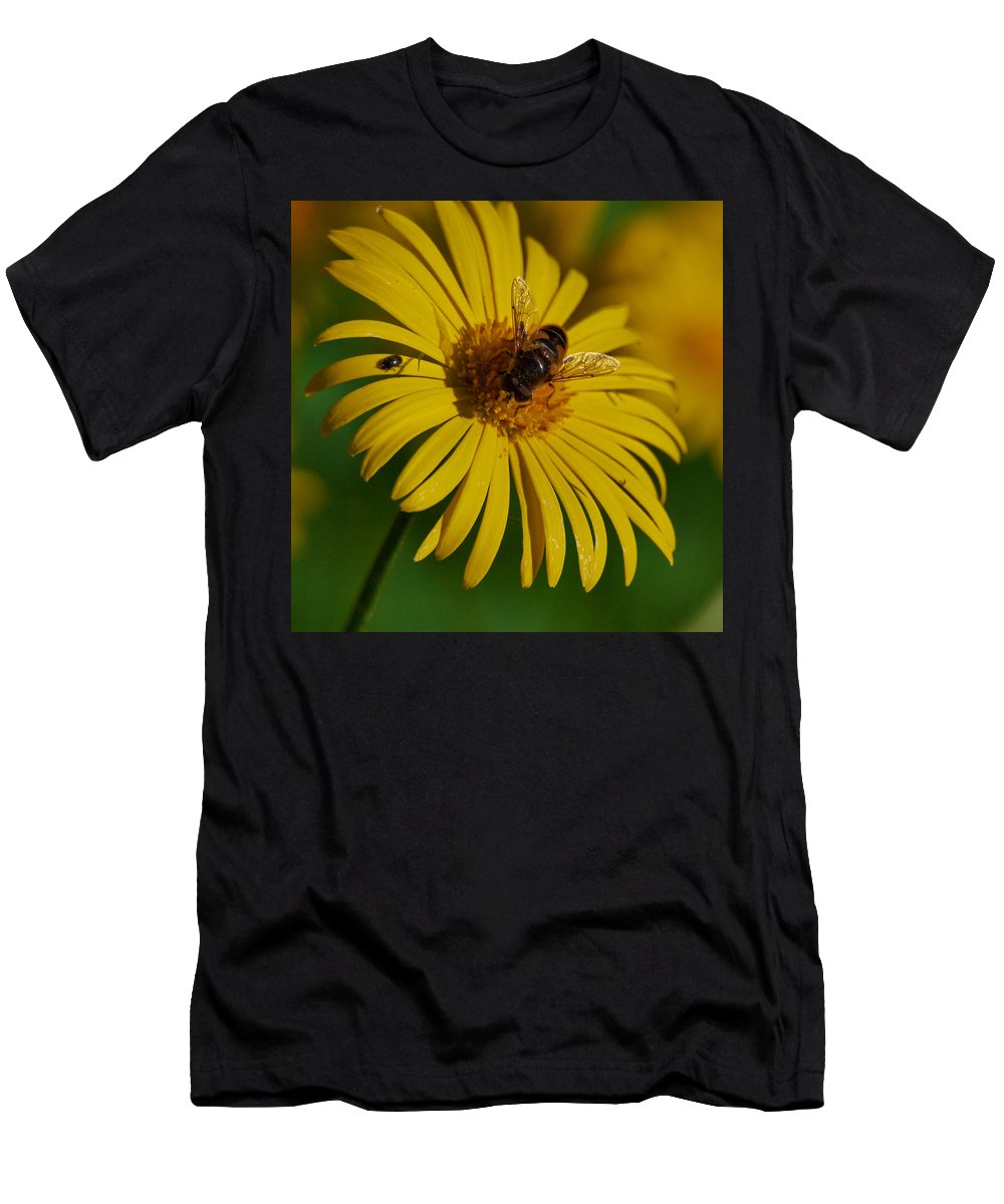 Doronicum Orientale Men's T-Shirt (Athletic Fit) featuring the photograph This One Is Mine by Jouko Lehto