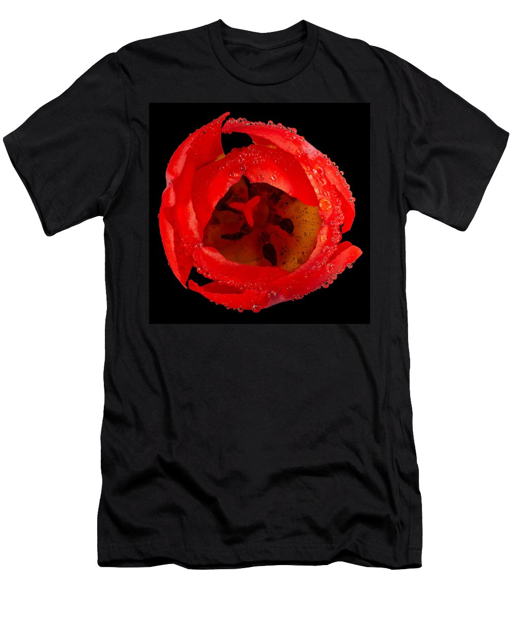 Red Men's T-Shirt (Athletic Fit) featuring the photograph This Red Tulip by Steve Gadomski