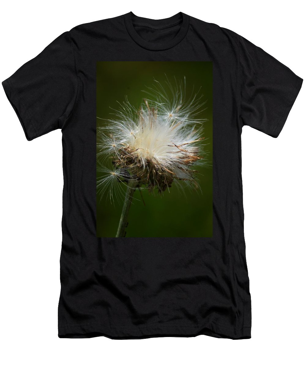 Thistle Swirls Men's T-Shirt (Athletic Fit) featuring the photograph Thistle Swirls by Maria Urso