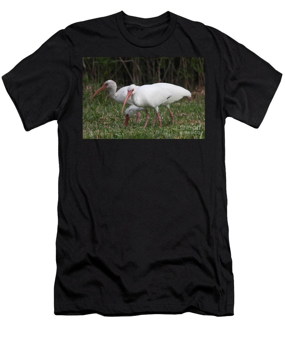 Ibis Men's T-Shirt (Athletic Fit) featuring the photograph Three Ibis Together by Christiane Schulze Art And Photography