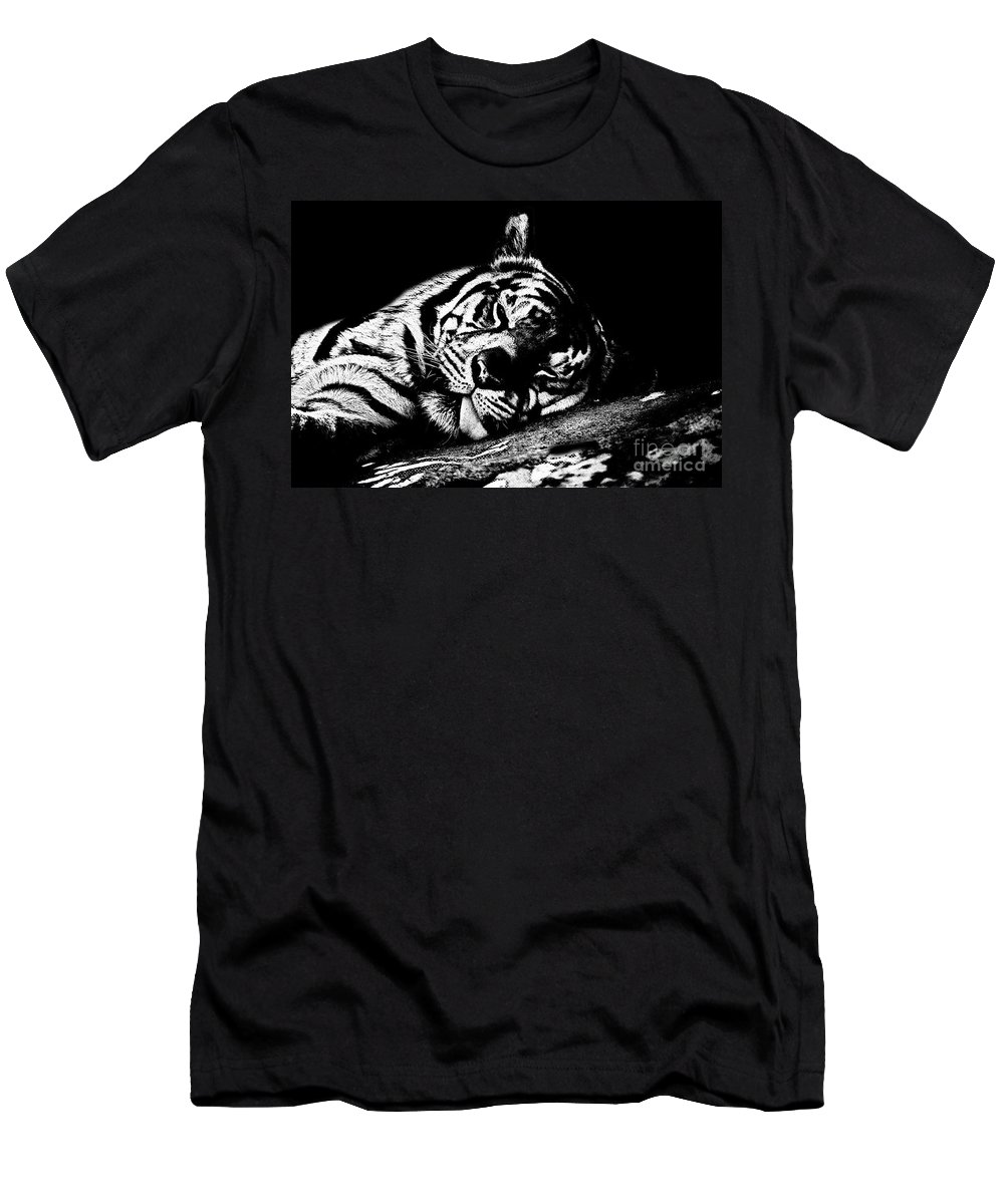 Tiger Men's T-Shirt (Athletic Fit) featuring the photograph Tiger R And R Black And White by Douglas Barnard