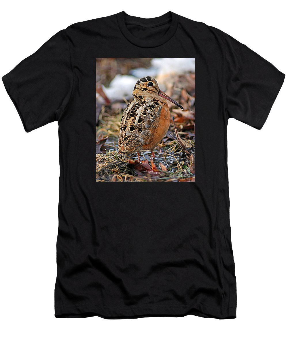 American Woodcock Men's T-Shirt (Athletic Fit) featuring the photograph Timberdoodle The American Woodcock by Timothy Flanigan