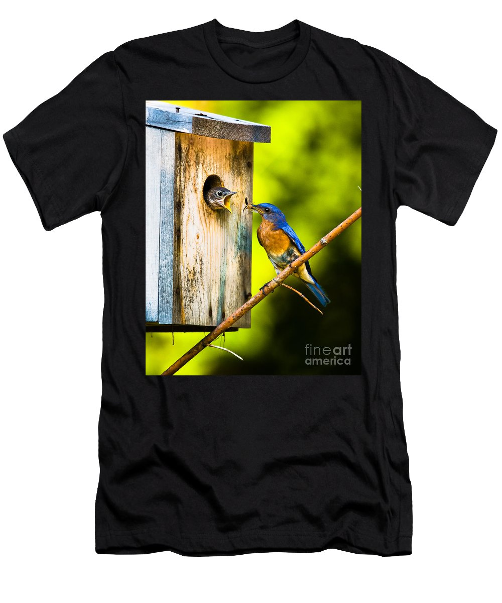 Bluebird Men's T-Shirt (Athletic Fit) featuring the photograph Time To Fly by Ronald Lutz