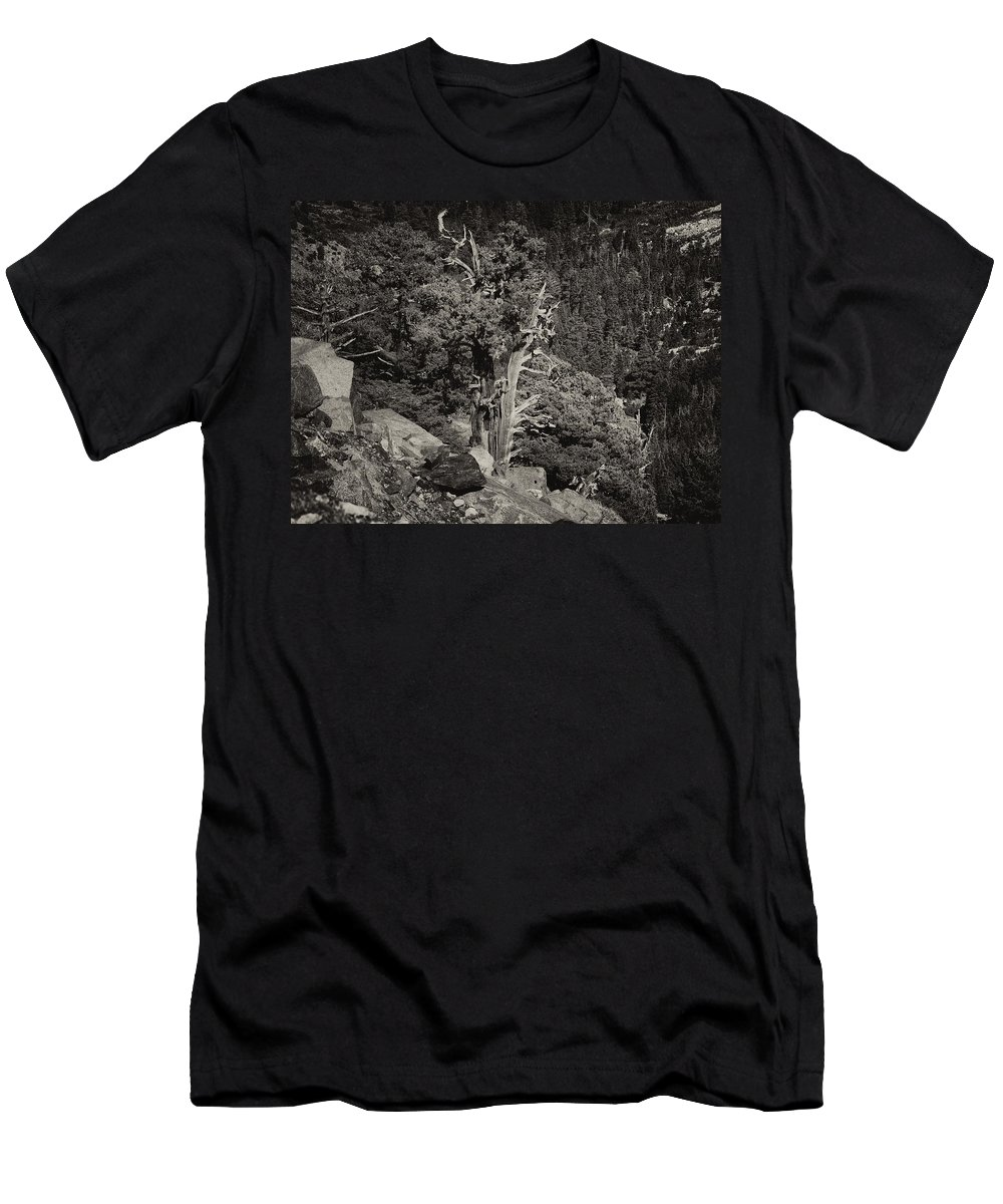 Landscape Men's T-Shirt (Athletic Fit) featuring the photograph Tioga Pass Road Sepia by David Beebe