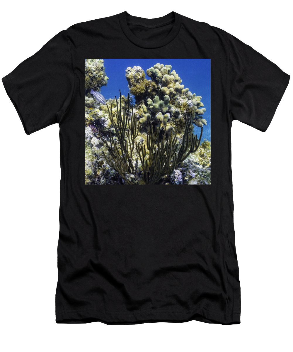 Ocean Men's T-Shirt (Athletic Fit) featuring the photograph To The Sky by Lynne Browne