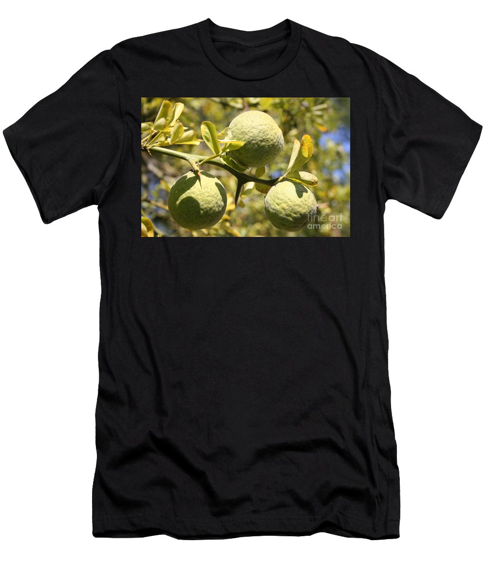 Fruit Men's T-Shirt (Athletic Fit) featuring the photograph Tree Fruit by Christiane Schulze Art And Photography