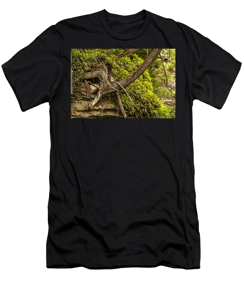 Ausable Chasm Ny Men's T-Shirt (Athletic Fit) featuring the photograph Tree Grows From Rock Outcrop by Eric Swan