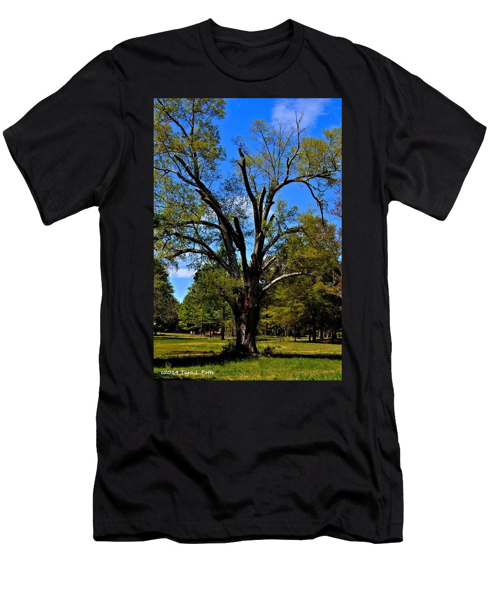 Tree Men's T-Shirt (Athletic Fit) featuring the photograph Tree In Rock Hill by Tara Potts