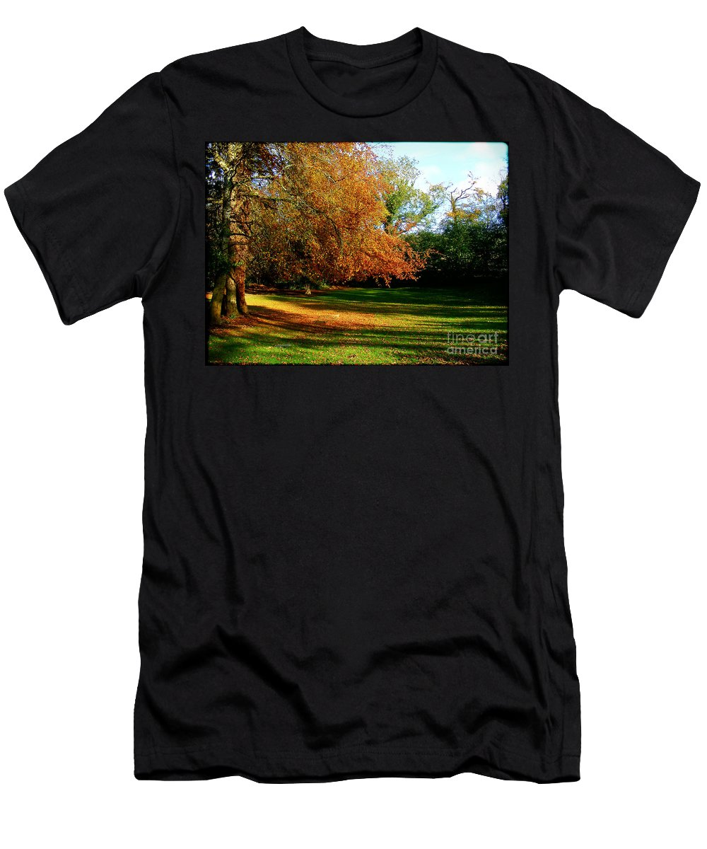Tree Of Gold Men's T-Shirt (Athletic Fit) featuring the photograph Tree Of Gold by Nina Ficur Feenan