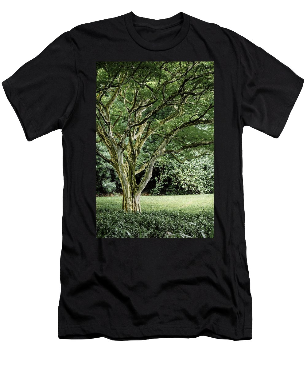Tree Men's T-Shirt (Athletic Fit) featuring the photograph Tree Of Life by Debbie Karnes