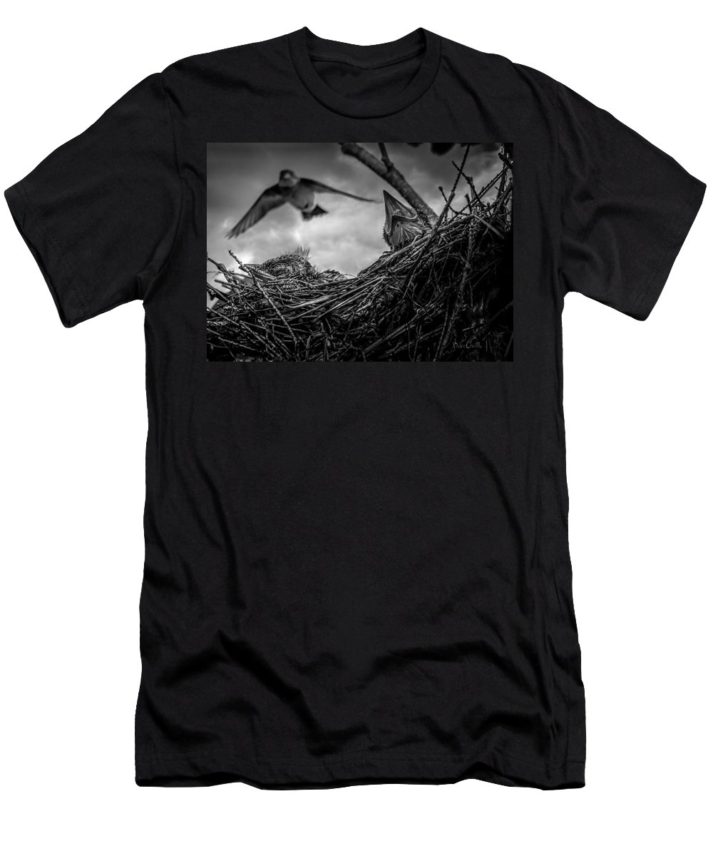 Swallow Men's T-Shirt (Athletic Fit) featuring the photograph Tree Swallows In Nest by Bob Orsillo