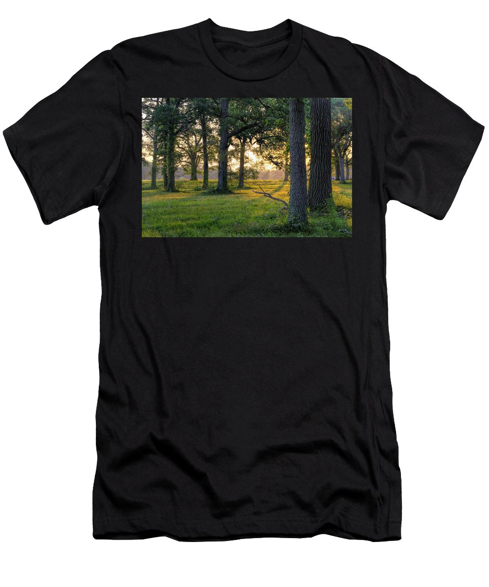 Trees Men's T-Shirt (Athletic Fit) featuring the photograph Trees At Sunrise by David Stone