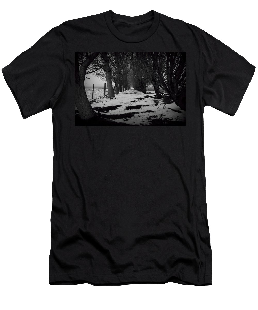 Trees Men's T-Shirt (Athletic Fit) featuring the photograph Trees Of The Ida Valley by Amanda Stadther