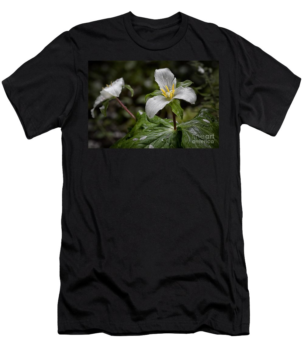 Trillium Men's T-Shirt (Athletic Fit) featuring the photograph Trillium - After The Rain by Belinda Greb