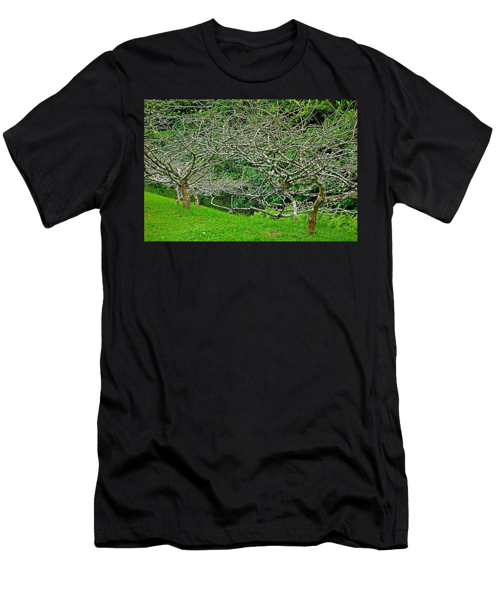 Tropical Men's T-Shirt (Athletic Fit) featuring the photograph Tropical Entanglement by Robert Meyers-Lussier