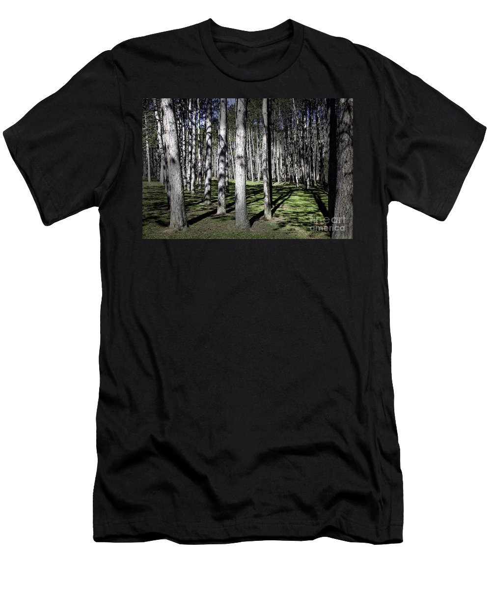 Trees Men's T-Shirt (Athletic Fit) featuring the photograph Trunks by Timothy Hacker