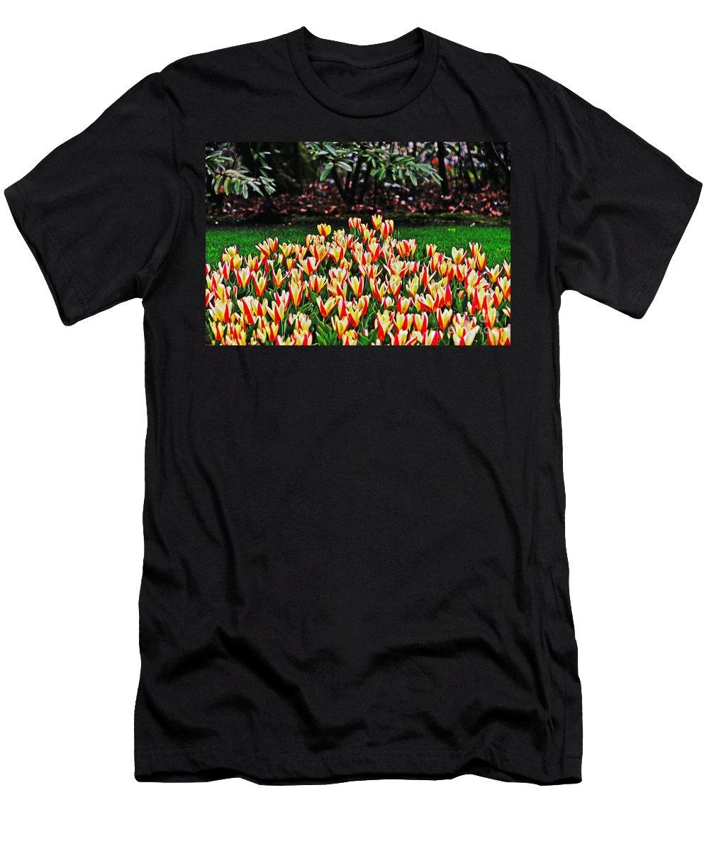 Travel Men's T-Shirt (Athletic Fit) featuring the photograph Tulip Stripe Garden by Elvis Vaughn