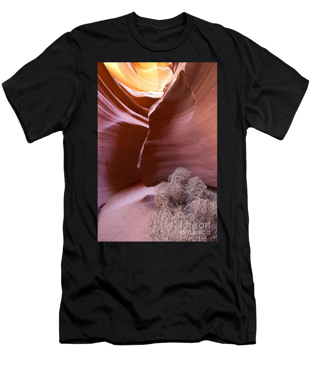 Nature Men's T-Shirt (Athletic Fit) featuring the photograph Tumbleweed In The Canyon by Bryan Keil