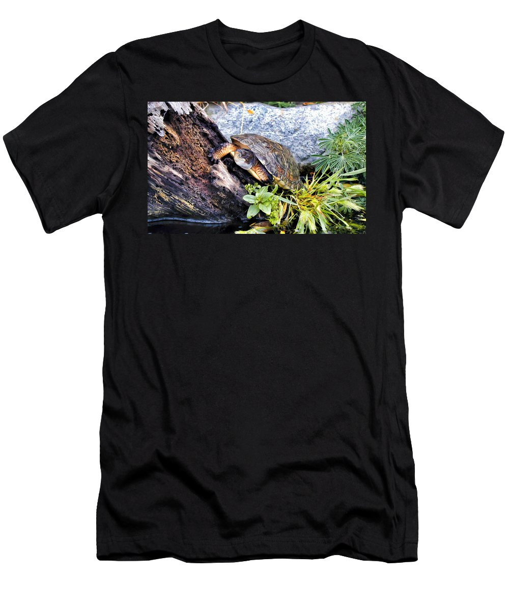 Turtle Men's T-Shirt (Athletic Fit) featuring the photograph Turtle 1 by Dawn Eshelman