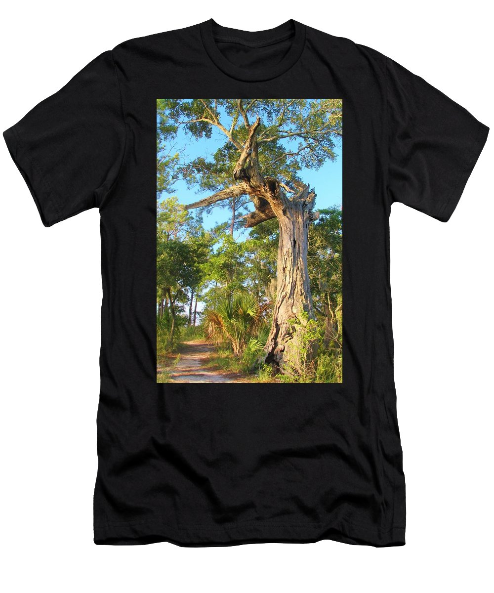 Tree Men's T-Shirt (Athletic Fit) featuring the photograph Twirling Tree Path by Wild Haven Photography