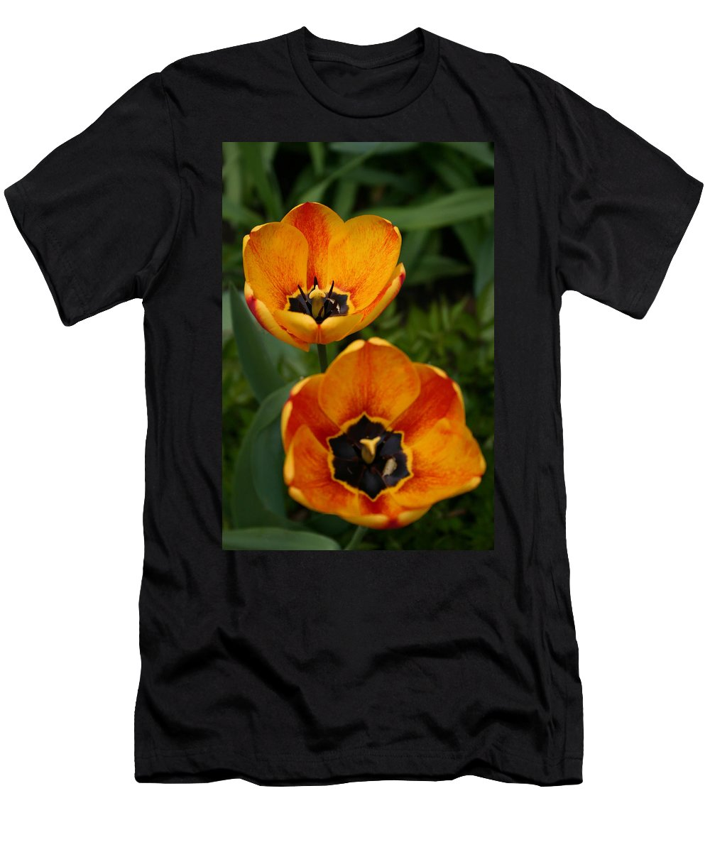 Denyse Duhaime Photography Men's T-Shirt (Athletic Fit) featuring the photograph Two Tulips by Denyse Duhaime