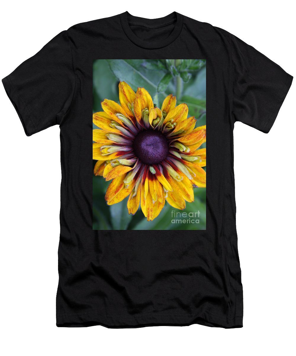 Sunflower Men's T-Shirt (Athletic Fit) featuring the photograph Unique Sunflower by Christiane Schulze Art And Photography