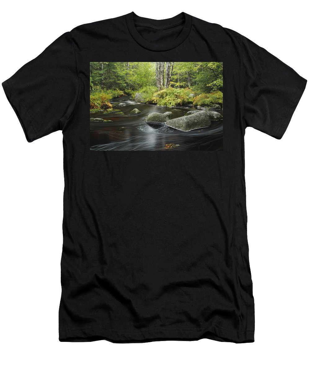 Feb0514 Men's T-Shirt (Athletic Fit) featuring the photograph Upper Bear River In Early Autumn Nova by Scott Leslie