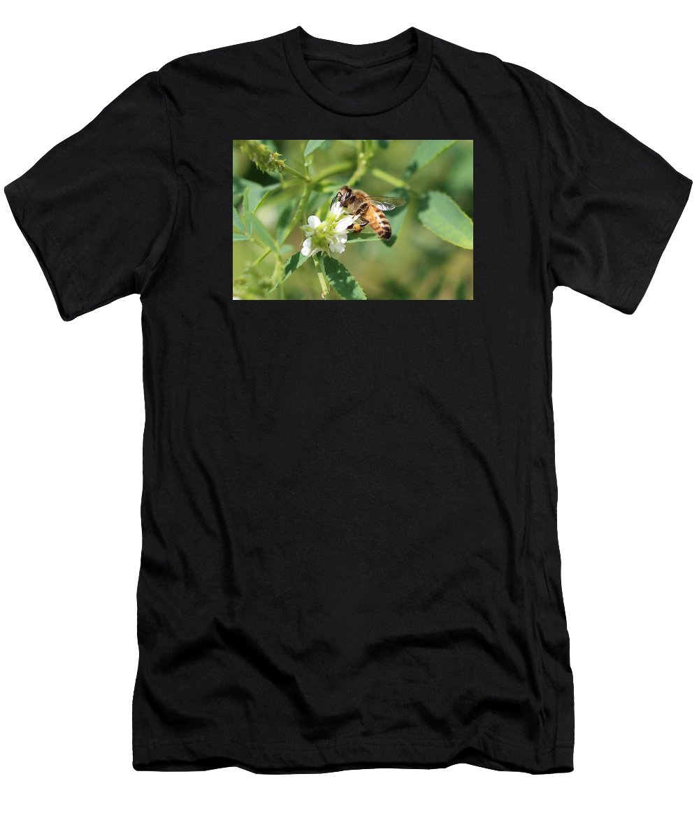 Honeybee Men's T-Shirt (Athletic Fit) featuring the photograph View From Below by Lucinda VanVleck
