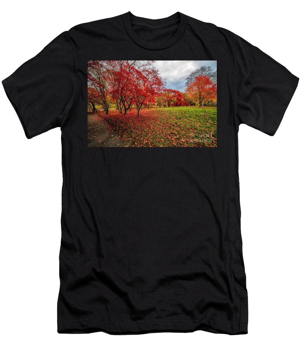 Acer Men's T-Shirt (Athletic Fit) featuring the photograph View Of Autumn by Adrian Evans