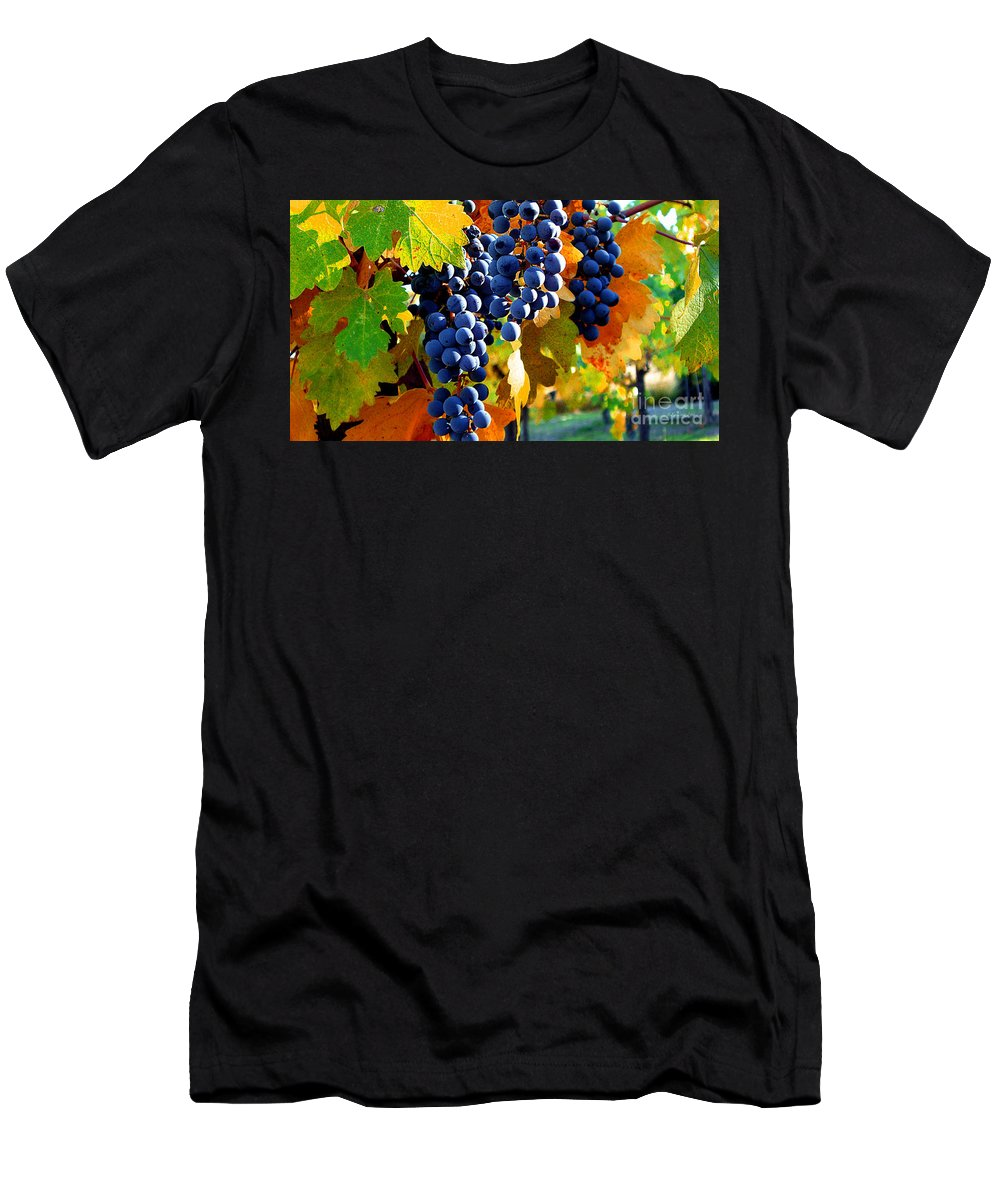 Autumn Men's T-Shirt (Athletic Fit) featuring the photograph Vineyard 2 by Xueling Zou