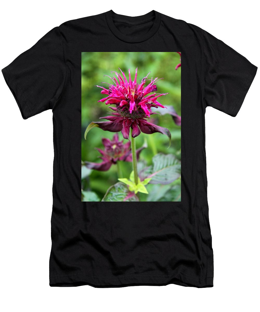 Flower Men's T-Shirt (Athletic Fit) featuring the photograph Violet Eyecatcher by Christiane Schulze Art And Photography