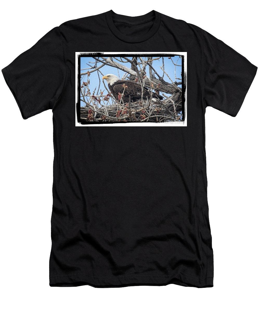 Colorado Men's T-Shirt (Athletic Fit) featuring the photograph Waiting by Bob Hislop