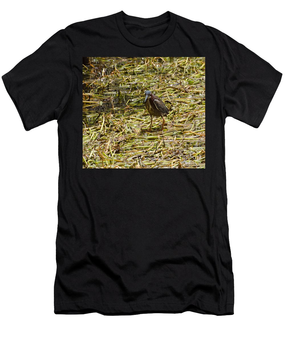 Bird Men's T-Shirt (Athletic Fit) featuring the photograph Walking On The Reeds by Donna Brown