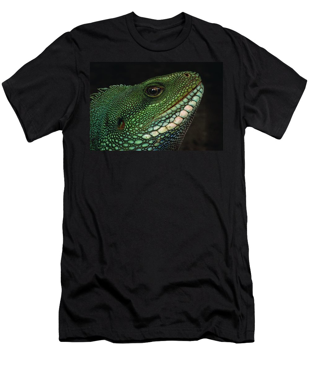 Feb0514 Men's T-Shirt (Athletic Fit) featuring the photograph Water Dragon Face Vietnam by Mark Moffett