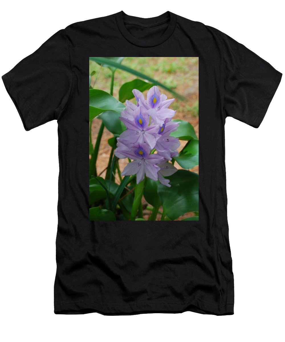 Pond Flower Men's T-Shirt (Athletic Fit) featuring the photograph Water Hyacinth by Robert Floyd
