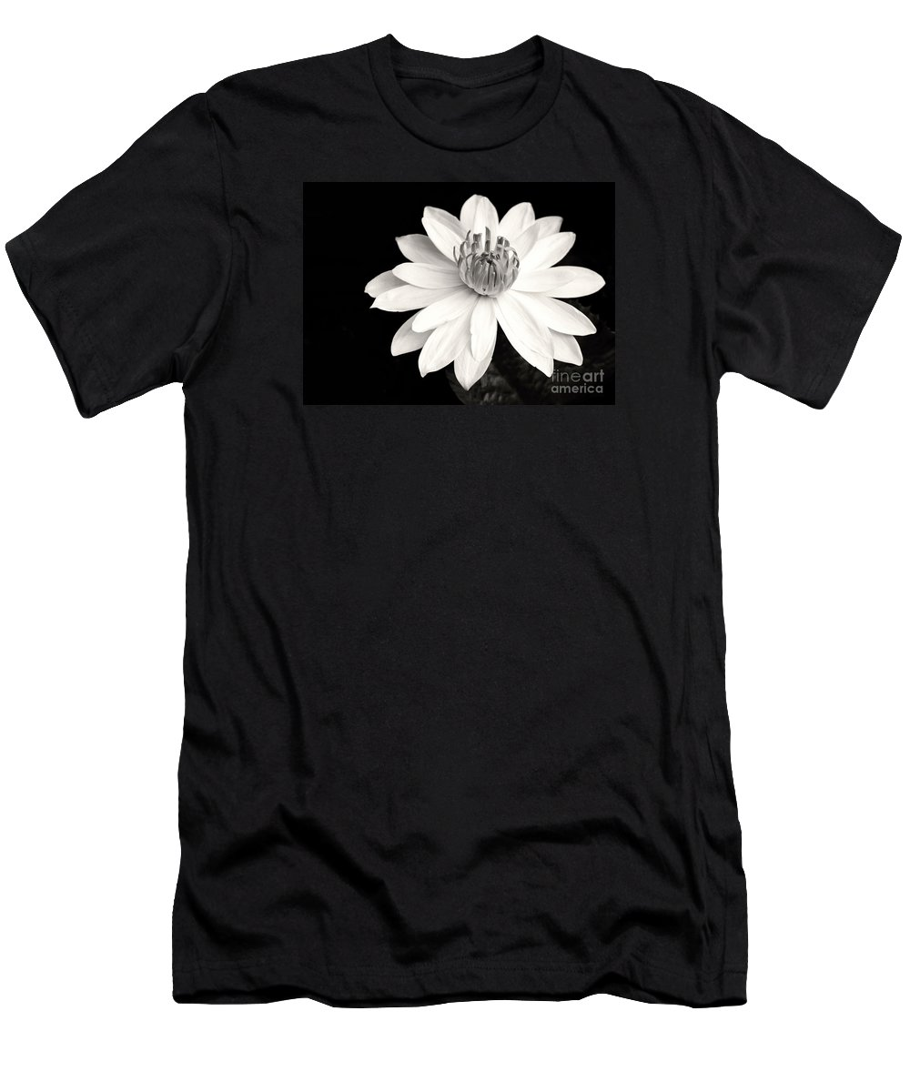 Landscape T-Shirt featuring the photograph Water Lily Ballerina by Sabrina L Ryan