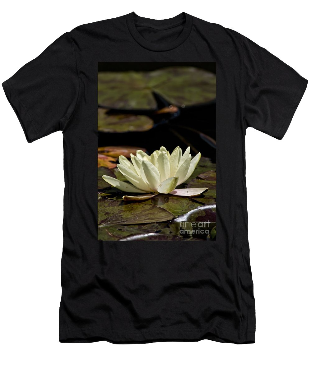 Water Lily Men's T-Shirt (Athletic Fit) featuring the photograph Water Lily Pictures 67 by World Wildlife Photography