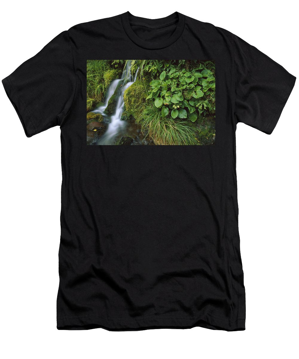 Feb0514 Men's T-Shirt (Athletic Fit) featuring the photograph Waterfall Egmont Np New Zealand by Shaun Barnett