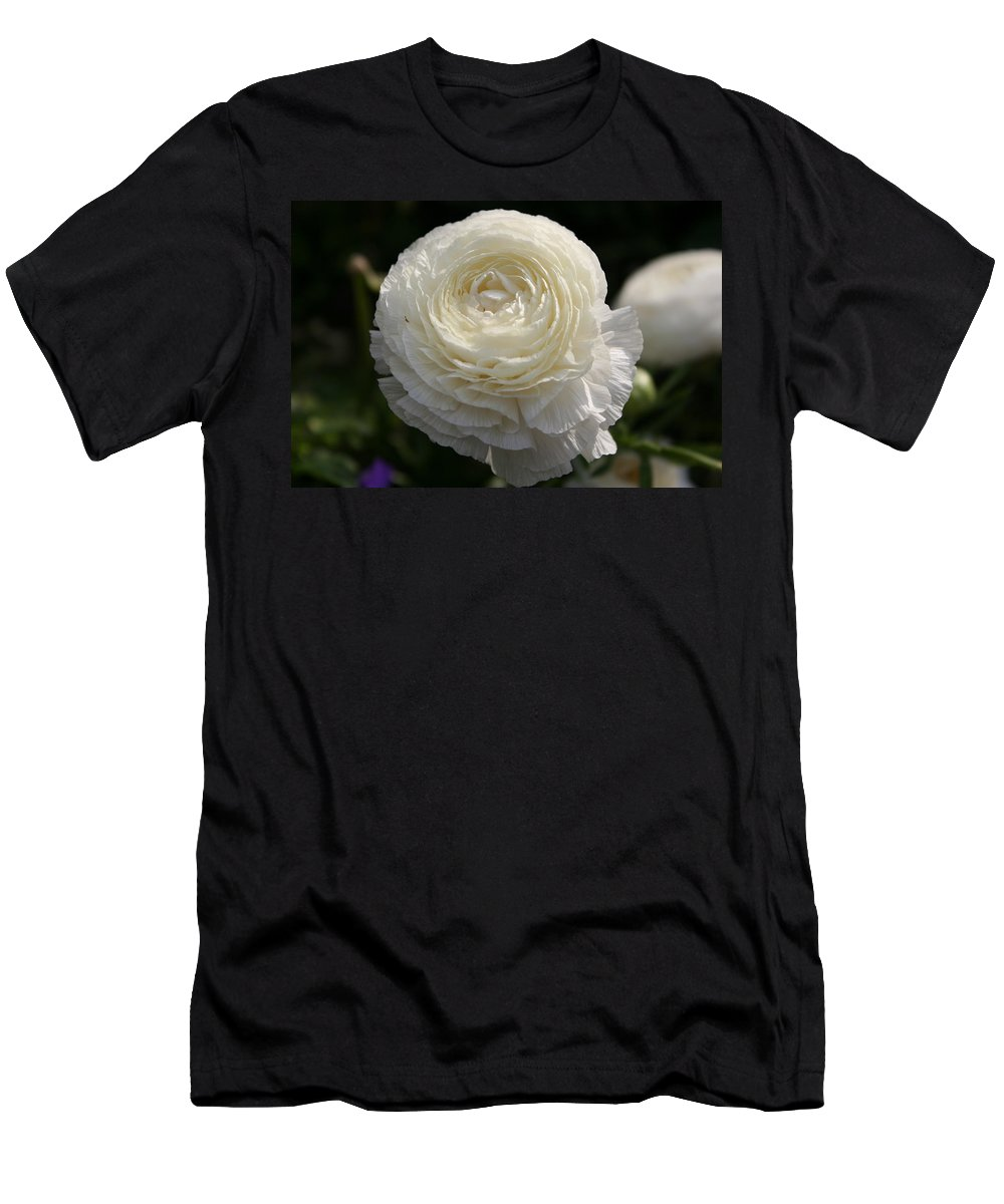 White Buttercup Men's T-Shirt (Athletic Fit) featuring the photograph White Buttercup - Ranunculus by Christiane Schulze Art And Photography