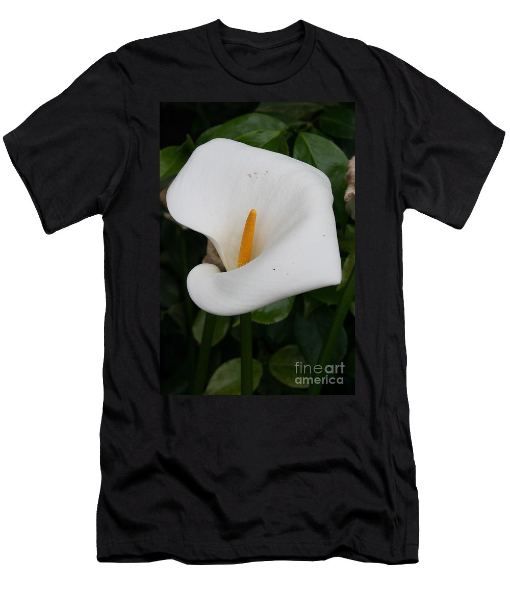 White Calla Men's T-Shirt (Athletic Fit) featuring the photograph White Calla Lilly by Christiane Schulze Art And Photography