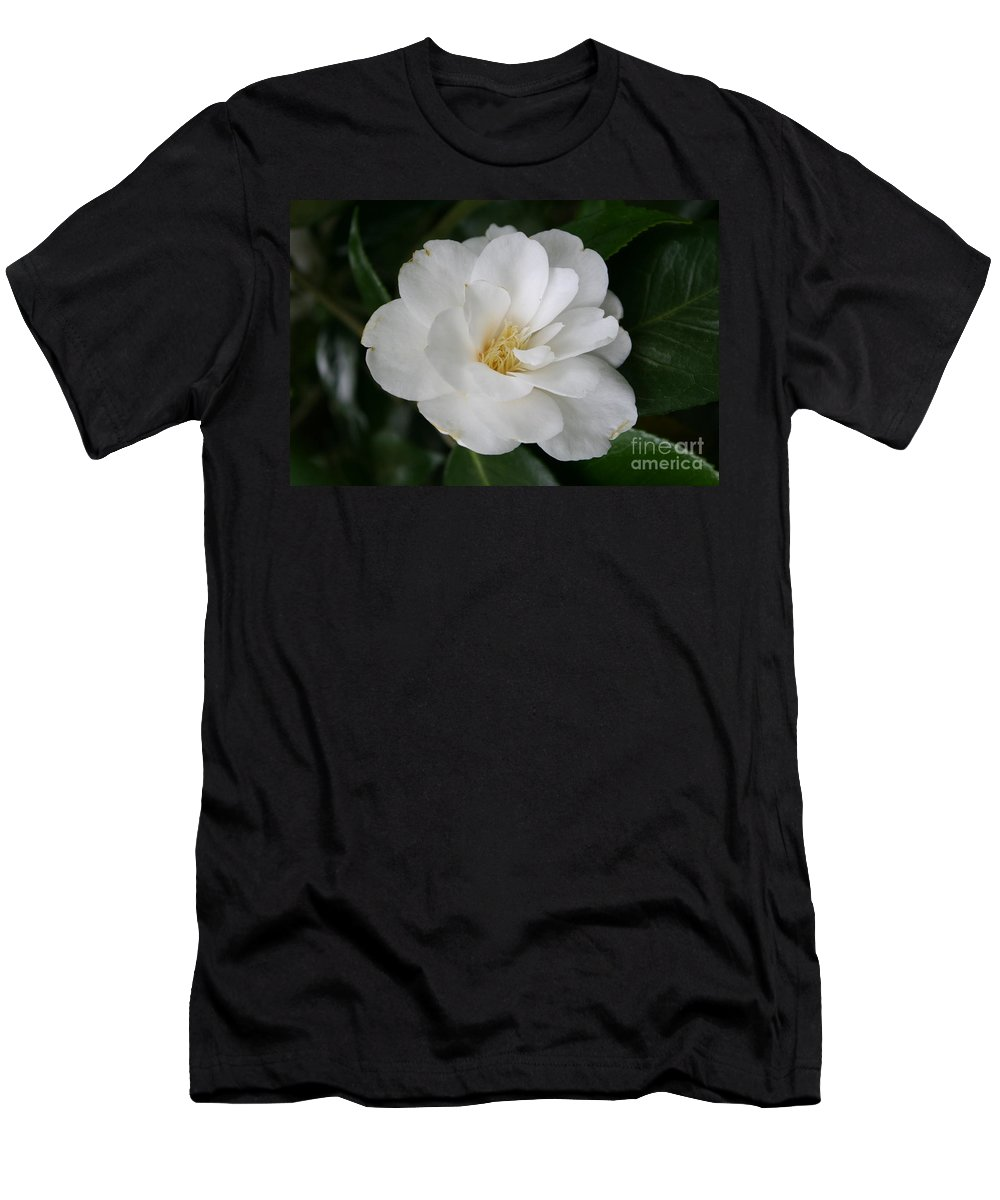White Camellia Men's T-Shirt (Athletic Fit) featuring the photograph Snow White Camellia by Christiane Schulze Art And Photography