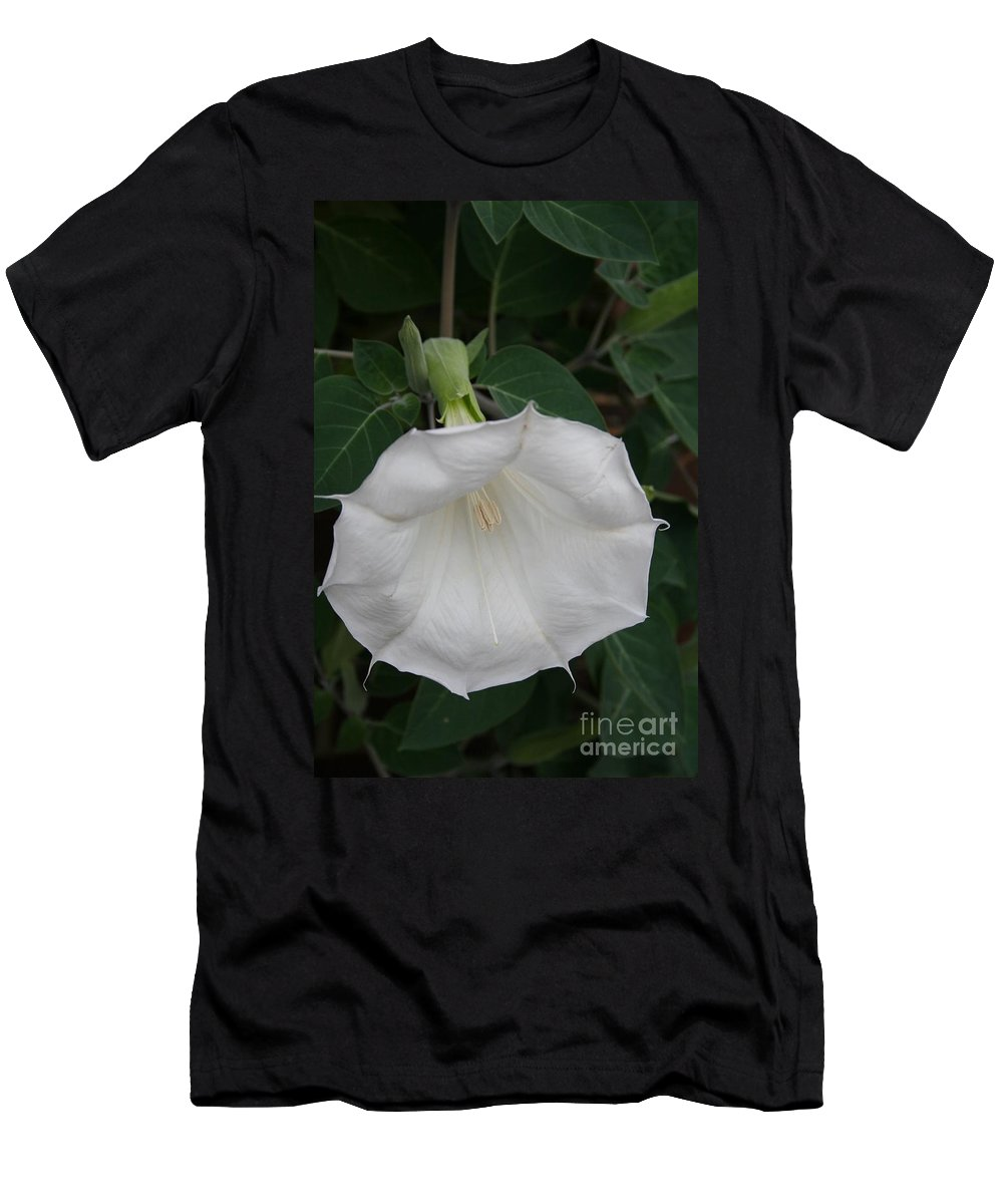 White Datura Men's T-Shirt (Athletic Fit) featuring the photograph White Datura by Christiane Schulze Art And Photography