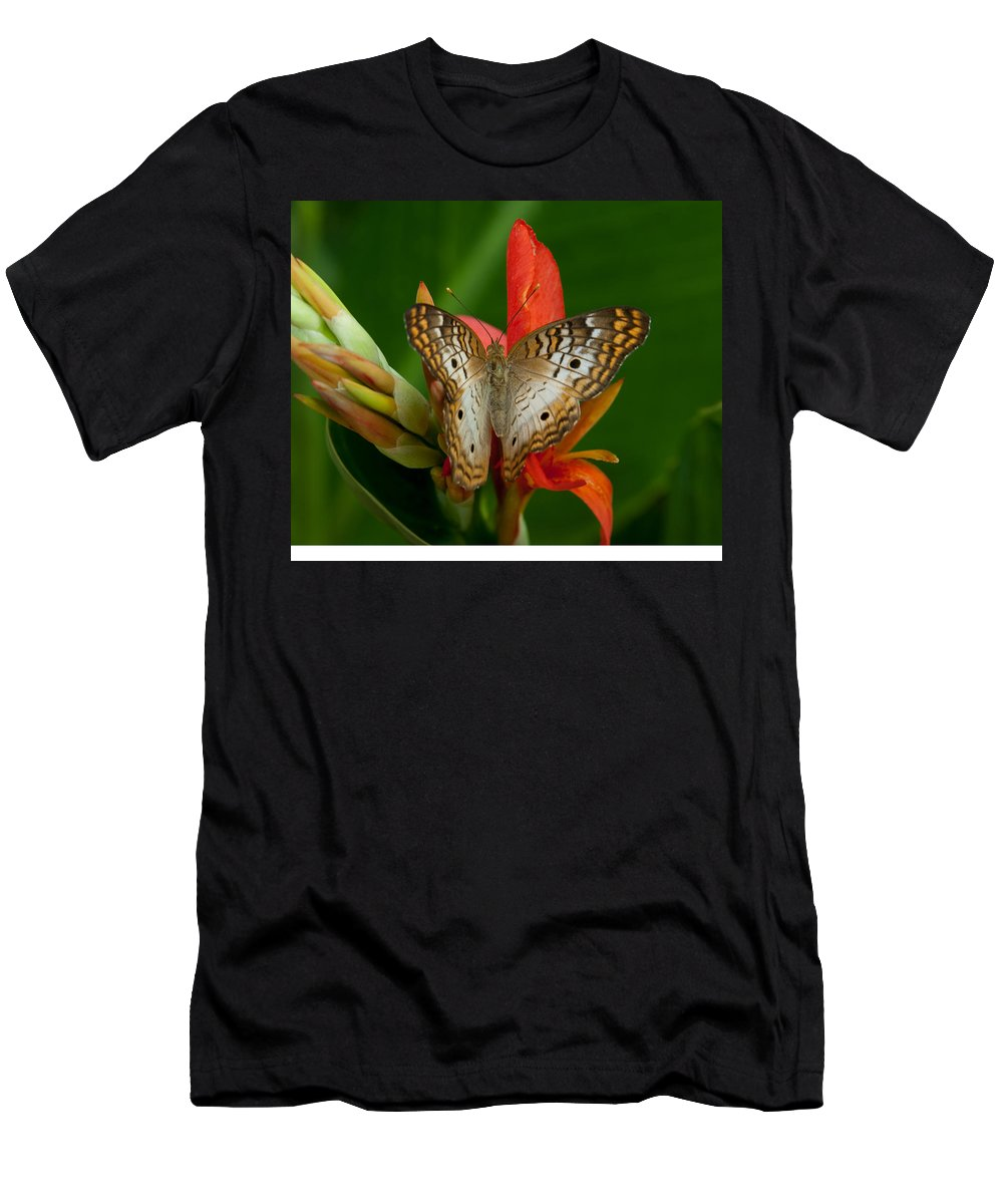 White Peacock Men's T-Shirt (Athletic Fit) featuring the photograph White Peacock Butterfly by Tam Ryan